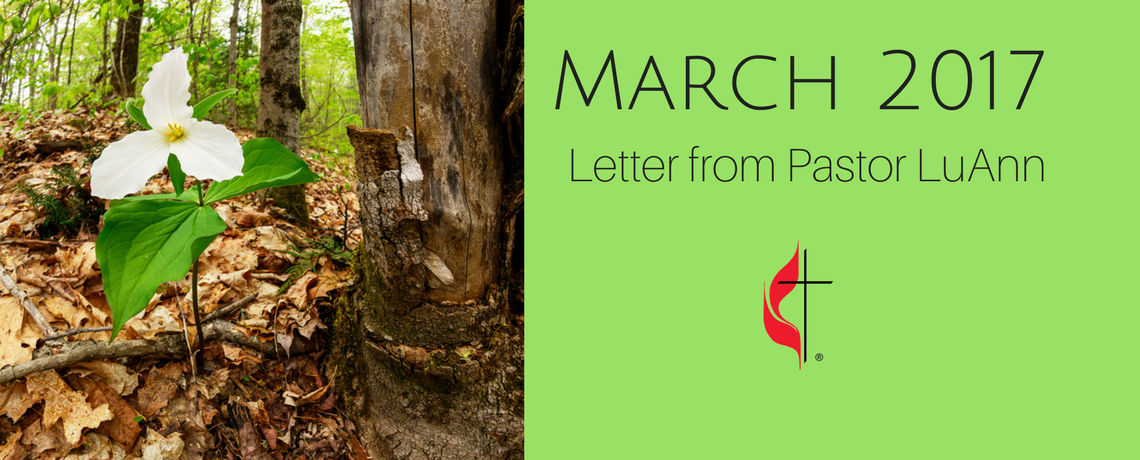 Letter from Pastor LuAnn – March 2017